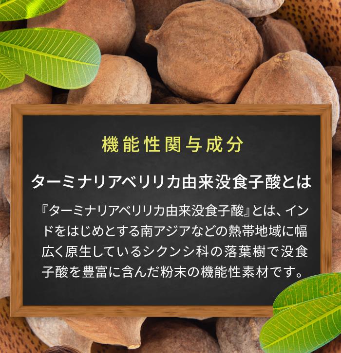 「ターミナリアべリリカ™」とは、インドをはじめとする南アジアなどの熱帯地域に幅広く原生しているシクンシ科の落葉樹でポリフェノールを豊富に含んだ粉末の機能性素材です。