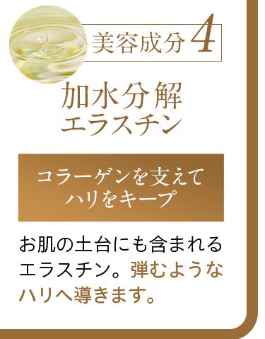 美容成分4:加水分解エラスチン
