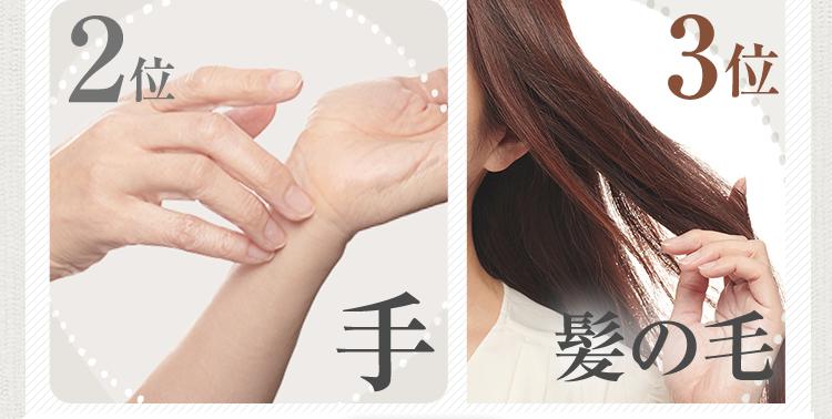 2位:手、3位:髪の毛