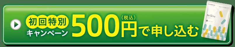 初回特別キャンペーン500円(税込)で申し込む