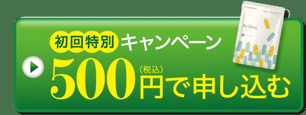 初回特別キャンペーン 500円で申し込む
