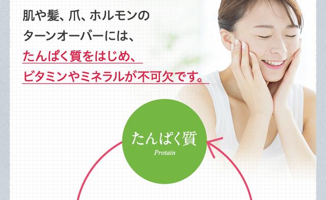 肌や髪、爪、ホルモンのターンオーバーには、たんぱく質をはじめ、ビタミンやミネラルが不可欠です。
