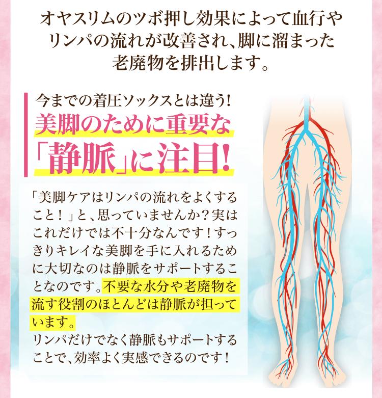 今までの着圧ソックスとは違う!美脚のために重要な「静脈」に注目!