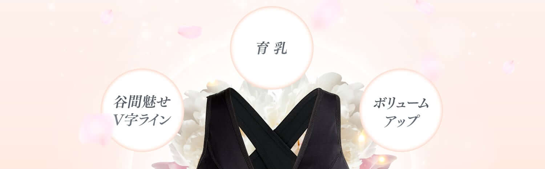谷間魅せV字ライン、育乳、ボリュームアップ