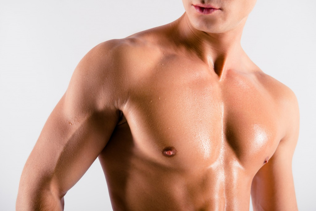 上半身を構成する筋肉について