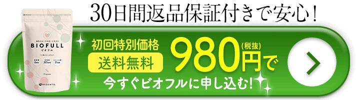初回特別価格980円 送料無料