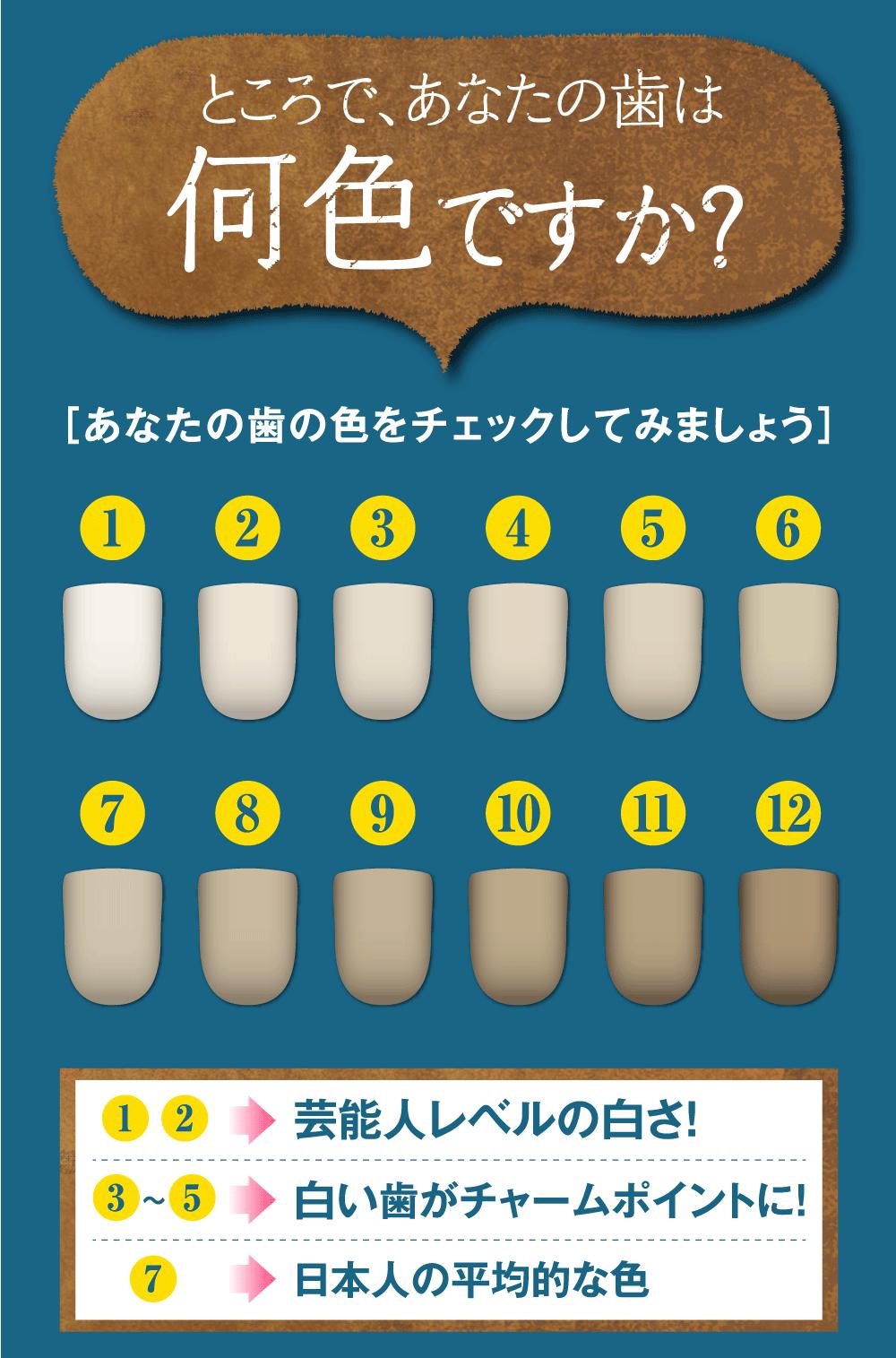 ところであなたの歯の色は何色ですか?あなたの歯の色をチェックしてみましょう