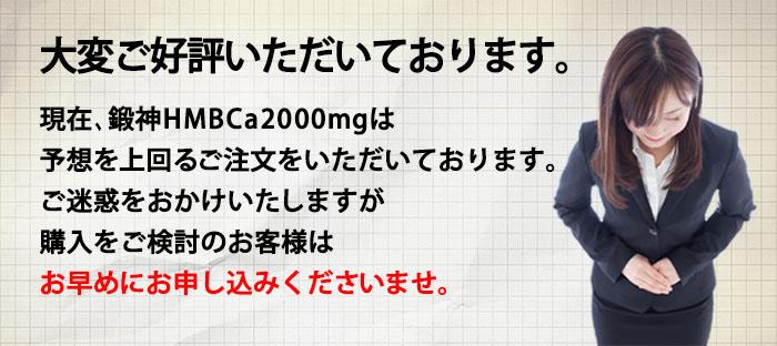 鍛神hmb2000mgは、現在好評につき品薄状態となっております。