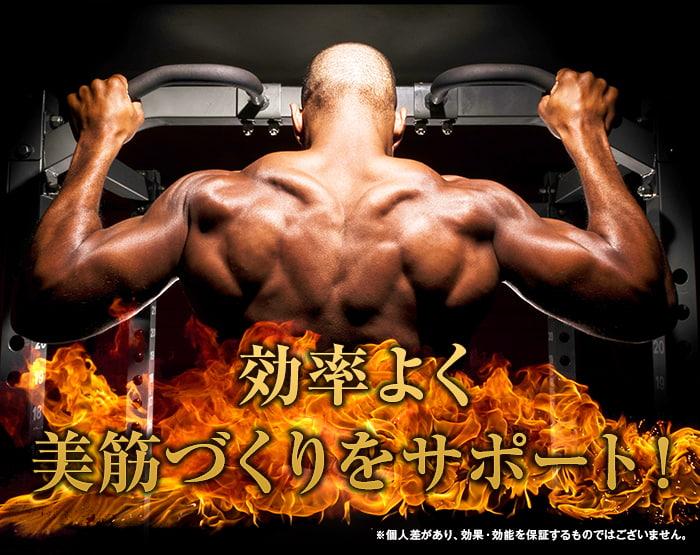 鍛神hmbサプリメントで効率良く美筋づくりをサポート!男性も女性も美しい体を手に入れろ!