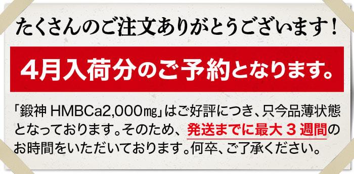 鍛神hmb2000mgは、予約販売中です。