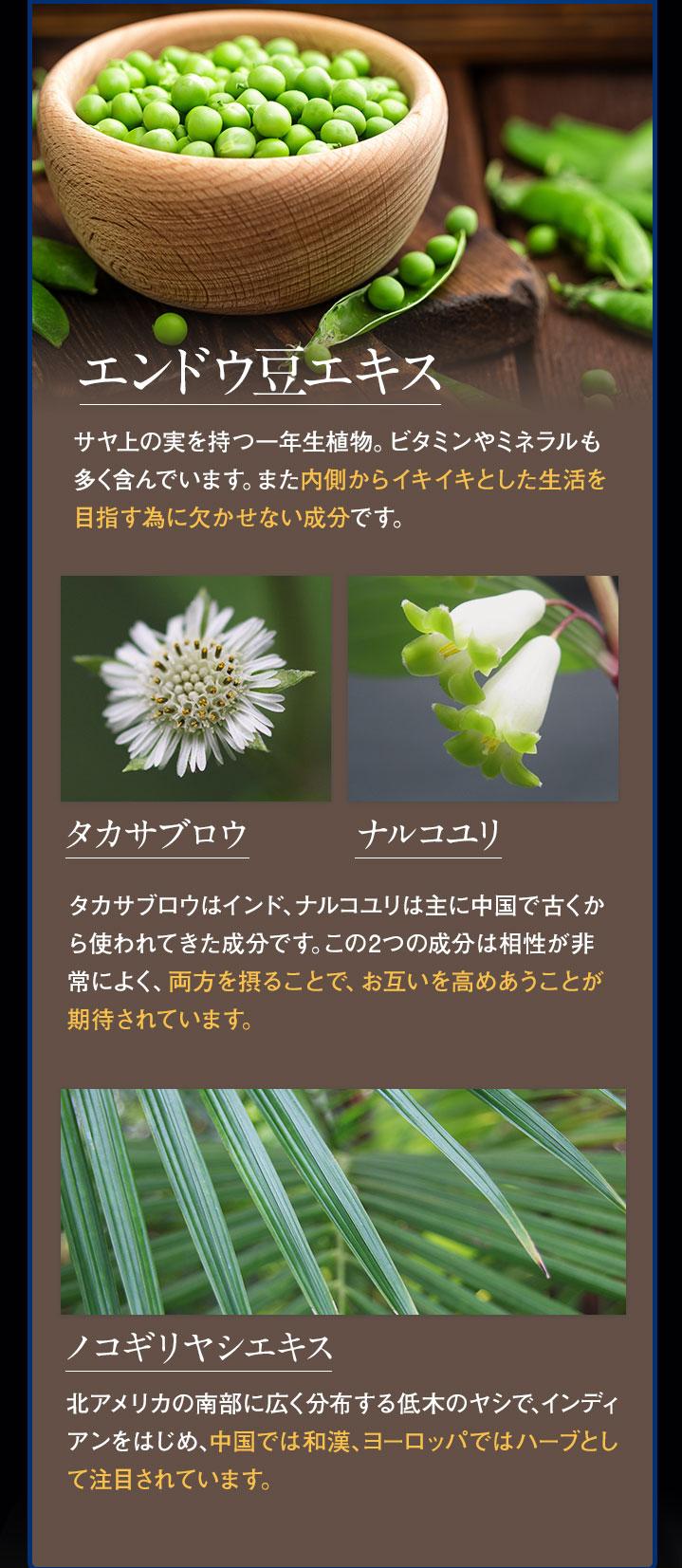 成分⑥植物成分の詳細