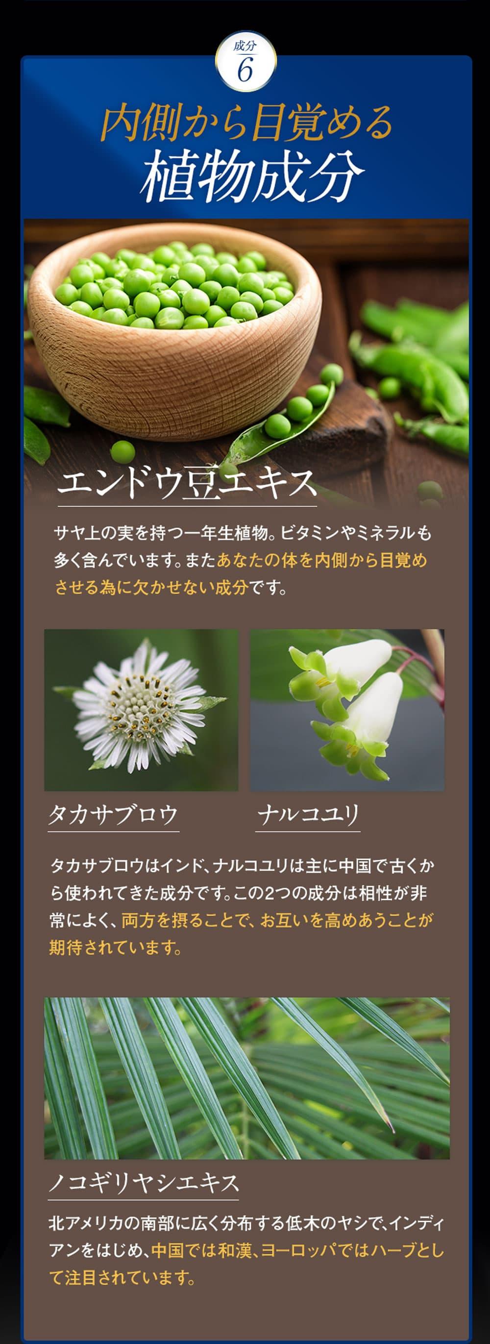 成分⑥植物成分