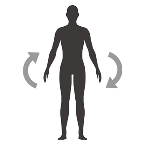 乳酸菌イメージ