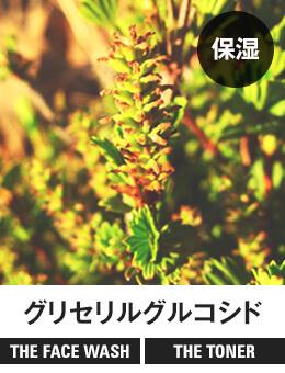 【保湿】グリセリルグルコシド[THE FACE WASH] [THE TONER]