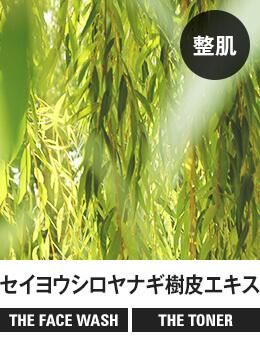 【整肌】セイヨウシロヤナギ樹皮エキス[THE FACE WASH] [THE TONER]