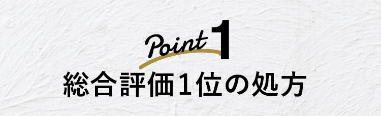 Point1 総合評価1位の処方