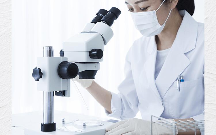 顕微鏡を覗く研究員の女性画像