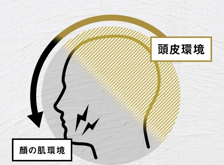 頭皮環境が顔の肌環境に影響しているイメージ図