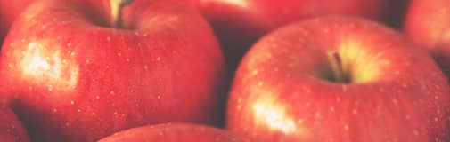 リンゴ果実培養細胞エキス(保湿・整肌)