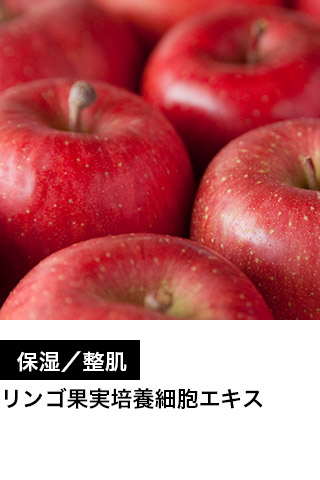 保湿/整肌 リンゴ果実培養細胞エキス