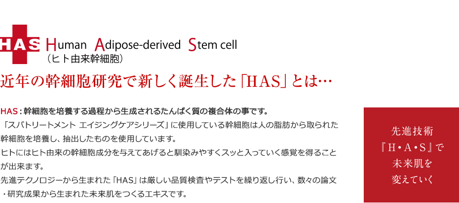 HAS Human Adipose-derived Stem cell(ヒト由来幹細胞)