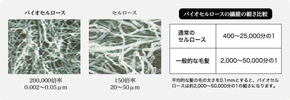バイオセルロースの繊維の細さ比較