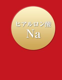 ヒアルロン酸Na