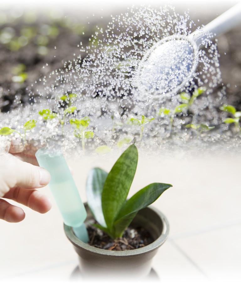 植物を育てるように「水」と「栄養」を。正しいヘアサイクルを取り戻そうの画像