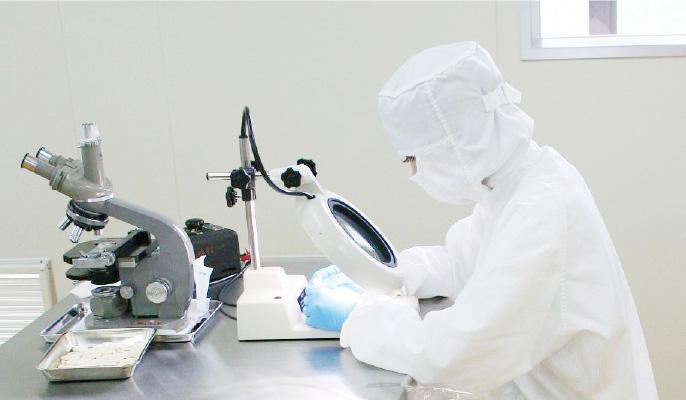 ファーサは皮膚への吸収を研究する製薬会社が開発した育毛剤です。の画像