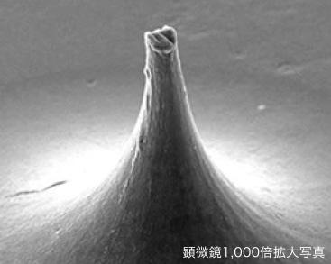 富士山型のニードルで角質層に直接届けることが可能な独自のマイクロニードル技術。の画像