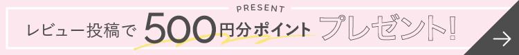レビュー投稿で500円分ポイントプレゼント