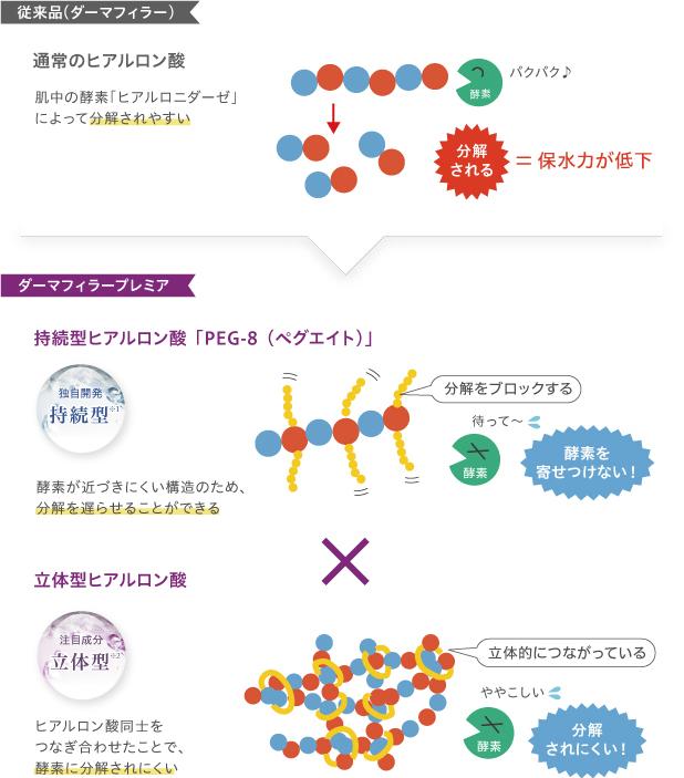 進化した2種類のヒアルロン酸を同時配合