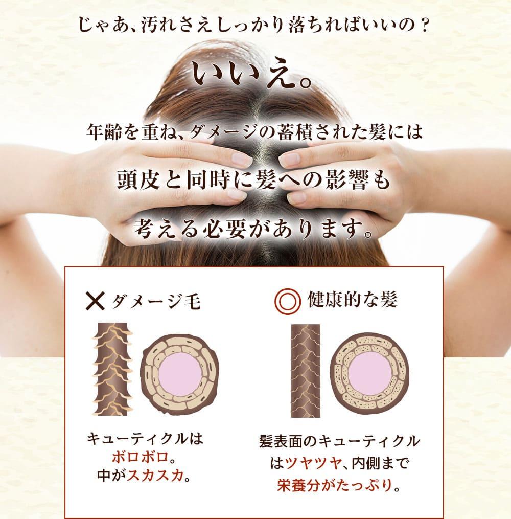 ポイント1:うるおいを与えながら汚れを落とす。フケ、かゆみ、皮脂をなくして、頭皮にやさしいスカルプケア