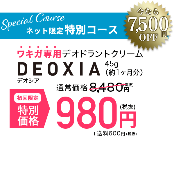 Special Course ネット限定特別コース