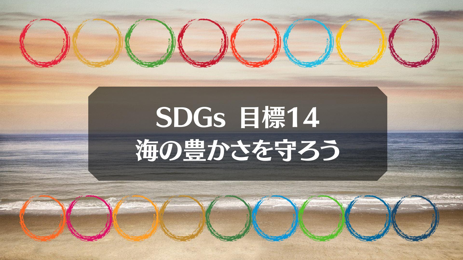SDGs目標14「海の豊かさを守ろう」2つの重要キーワードを解説|企業や個人の取り組みも