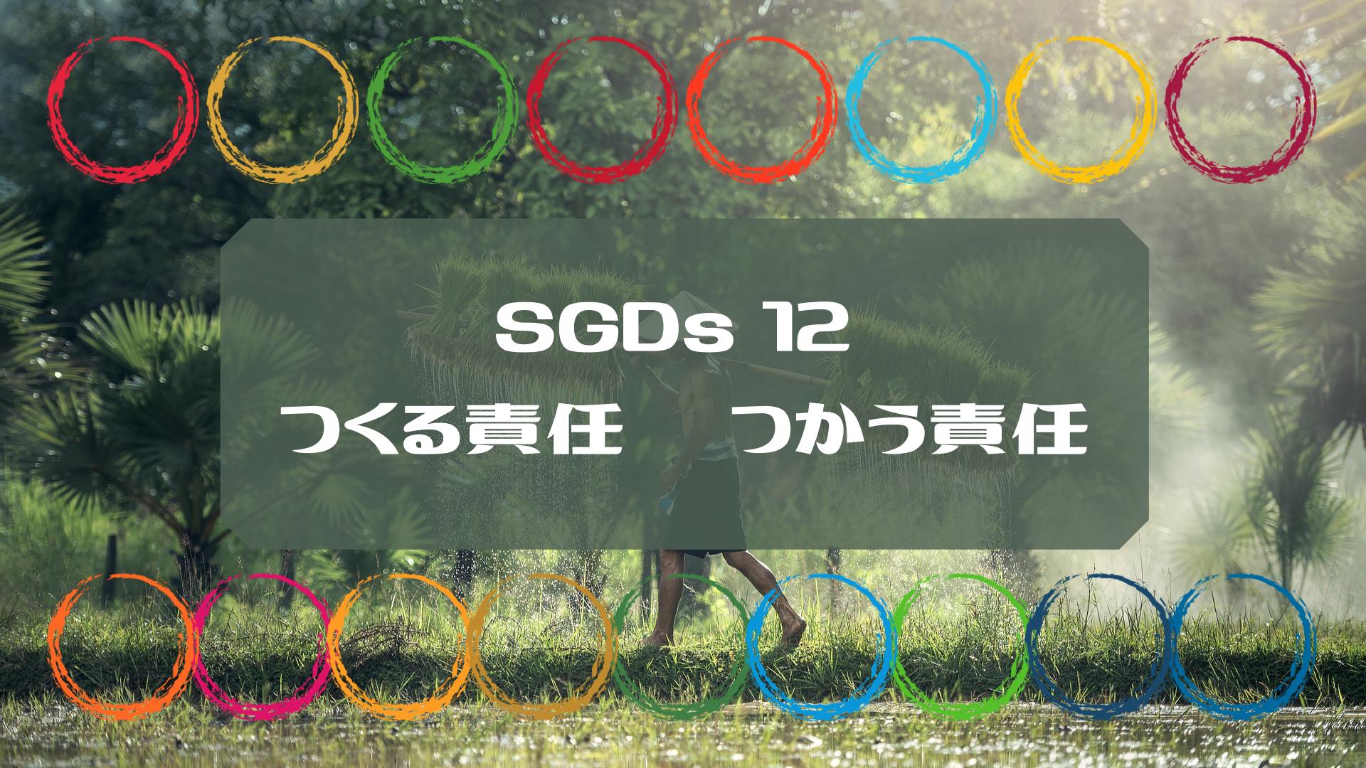 SDGs目標12「つくる責任 つかう責任」を考える|企業はどう向き合えばいい?