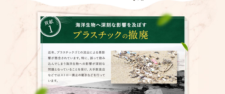 プラスチックの撤廃