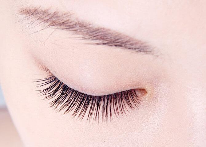 eyelaceed