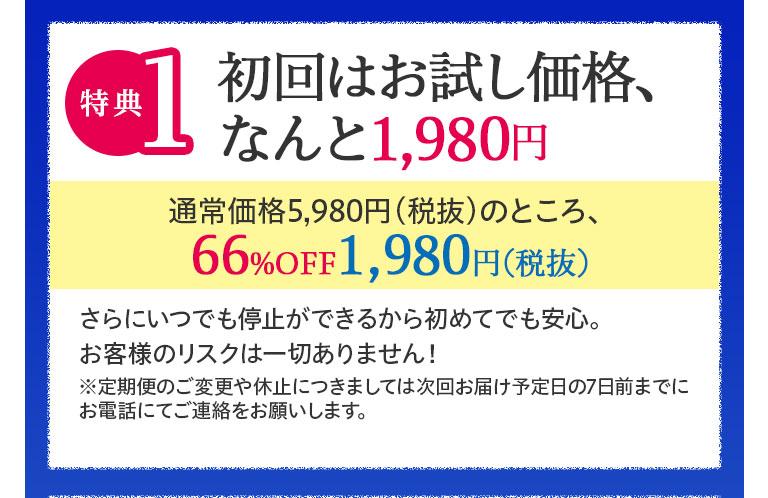 特典1:初回はお試し価格、なんと1,980円