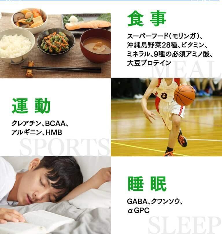 食事・運動・睡眠