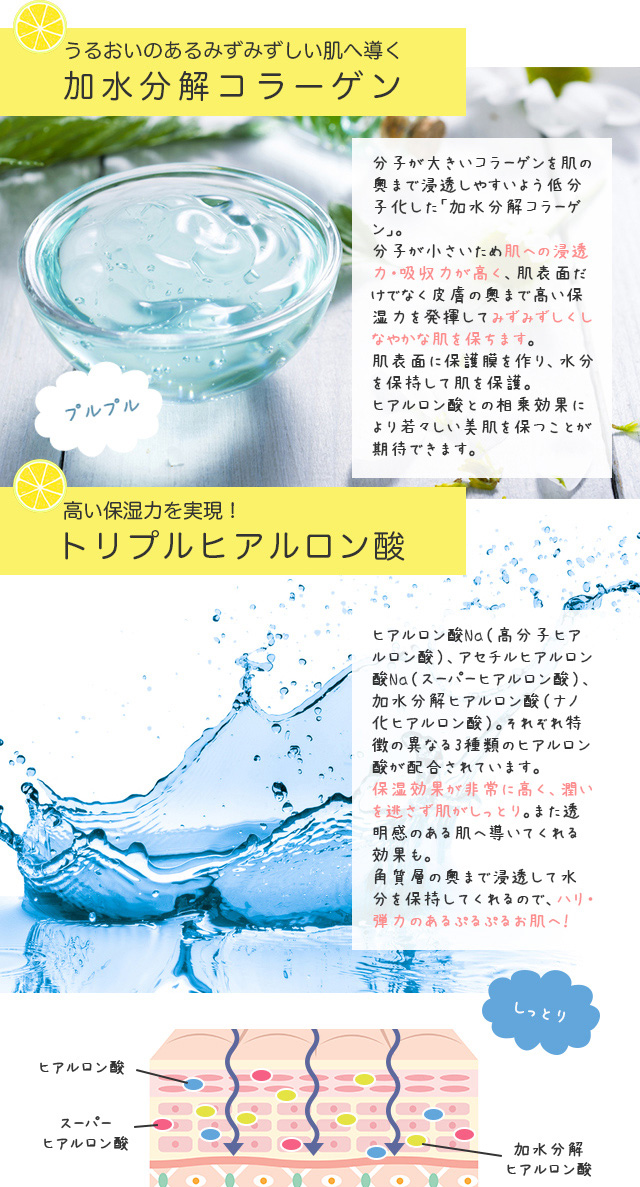加水分解コラーゲン、トリプルヒアルロン酸