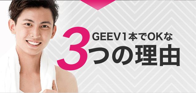 GEEV1本でOKな3つの理由