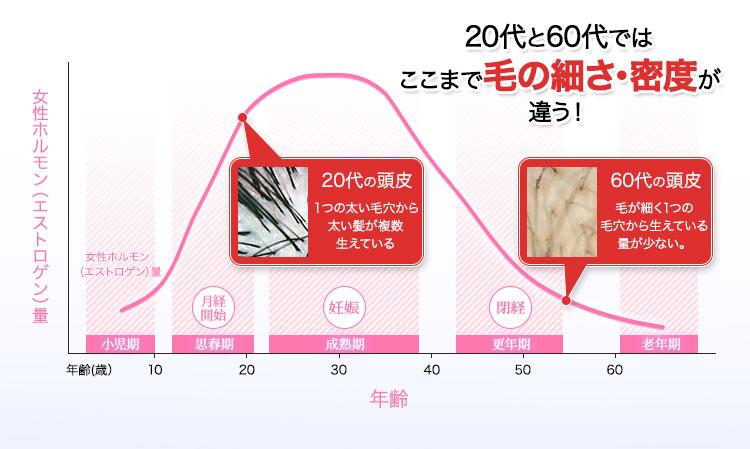 20代と60代ではここまで毛の細さ・密度が違う!