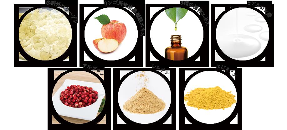 水溶性コラーゲン りんご果実培養細胞エキス 3種の植物エキス ヒアルロン酸 アルプチン レシチン ユビキノン