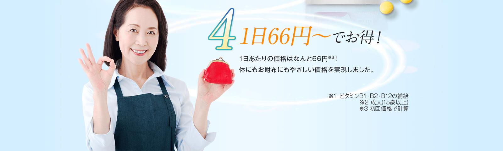 その4 1日66円~でお得!