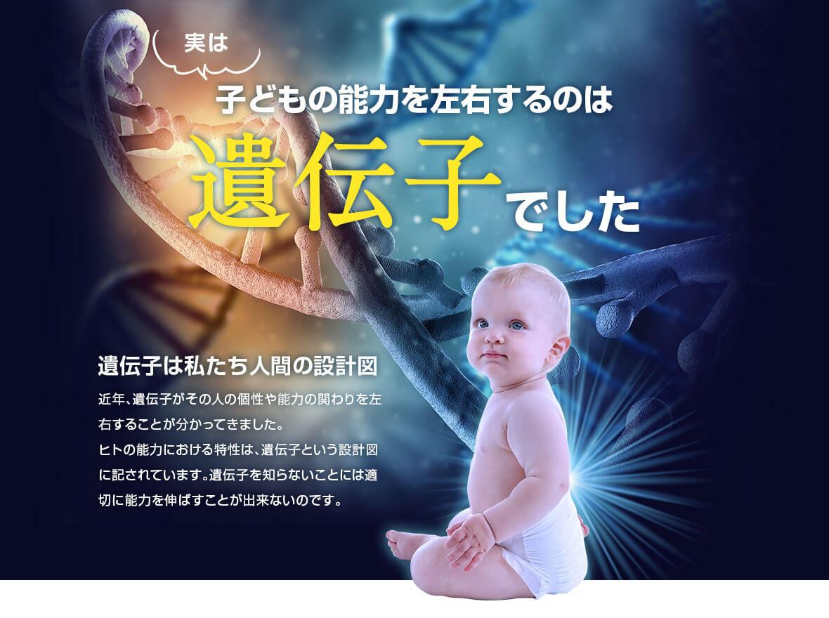 実は子どもの能力を左右するのは遺伝子でした