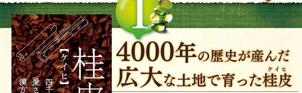 4000年の歴史が生んだ広大な土地で育った桂皮「最古」の香辛料であることはもちろんのこと、世界各地で「医薬品」としても遥か昔から用いられてきました。