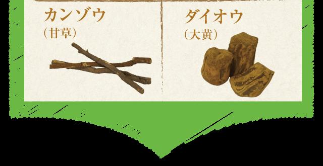 5.カンゾウ(甘草)6.ダイオウ(大黄)