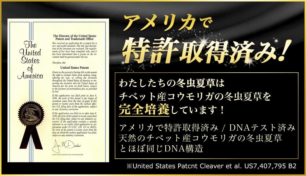 アメリカで 特許取得済み