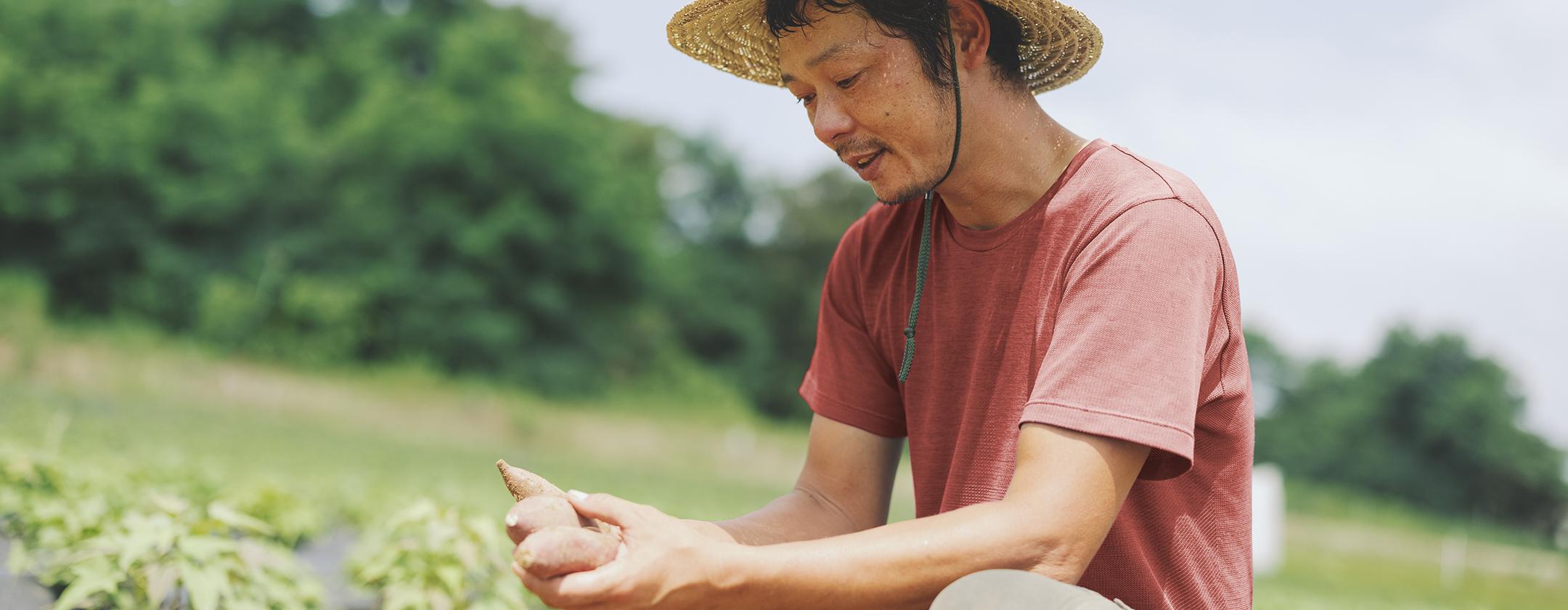 畑で取れたサツマイモを眺める男性の写真